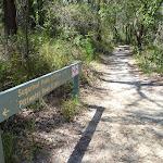 Walking around Sugarloaf Point (345256)