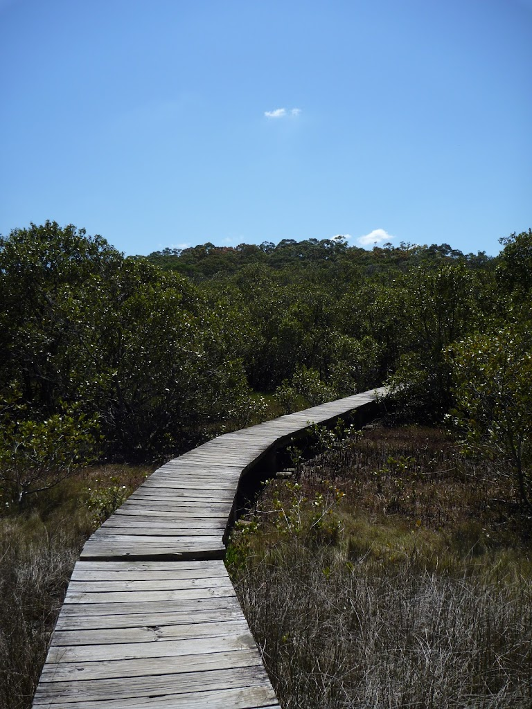Kitty Creek boardwalk