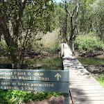 Kitty Creek Bridge