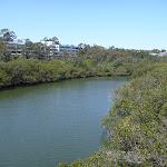 Lane Cove River (345838)
