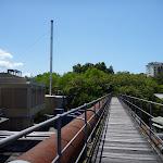 Bridge over Lane Cove River