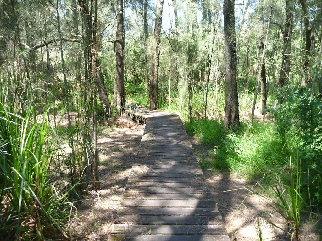 Boardwalk through Fairyland