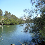 Lane Cove River at Fairyland (346210)