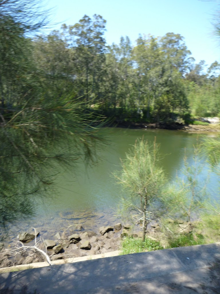 Lane Cove River at Koonjeree Picnic Area (346633)