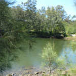 Lane Cove River at Koonjeree Picnic Area