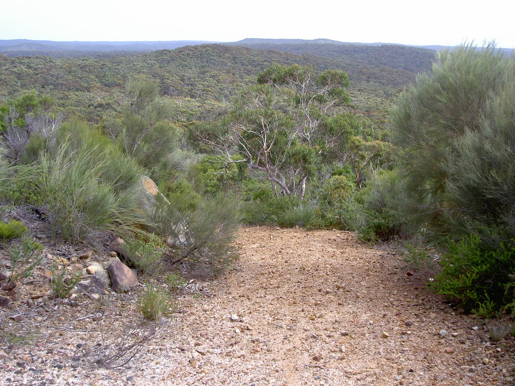 Wises service trail