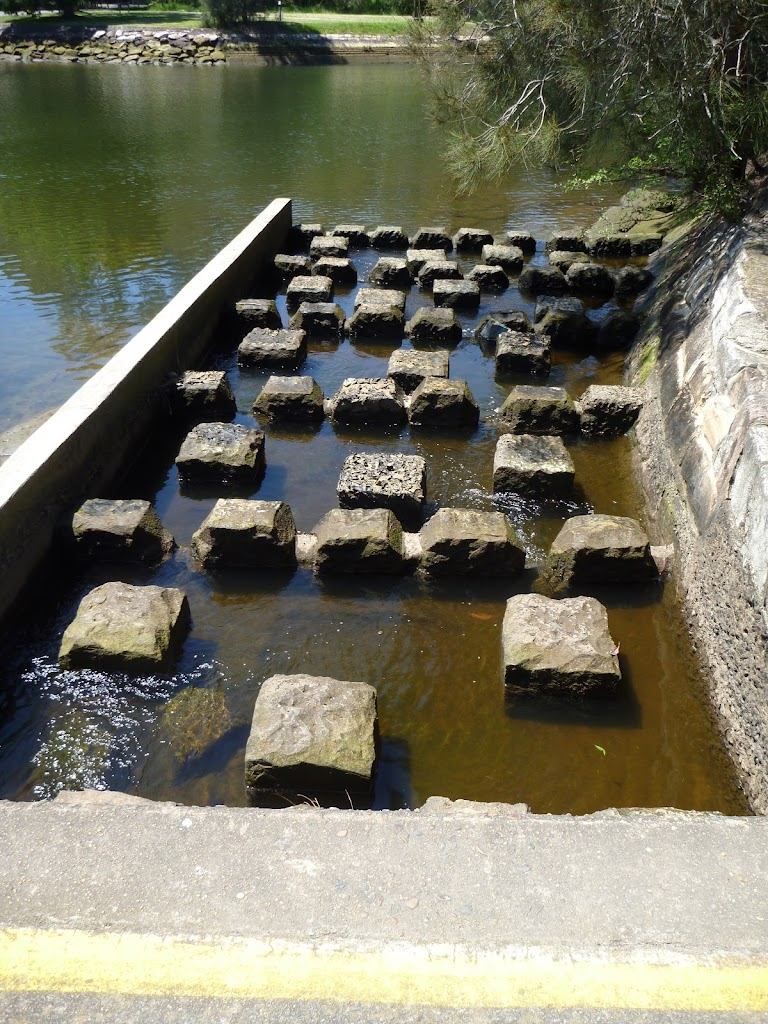 Fish Ladder at the weir (346657)