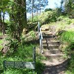 Steps below Fiddens Wharf Oval (347257)