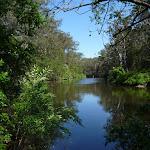 The Lane Cove River near Fiddens Wharf (347362)