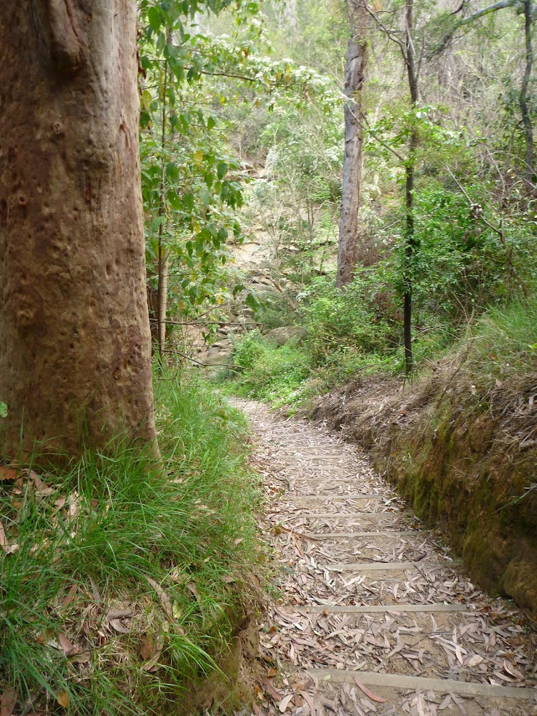 Walking down to Blackbutt Creek