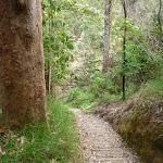 Walking down to Blackbutt Creek (347878)