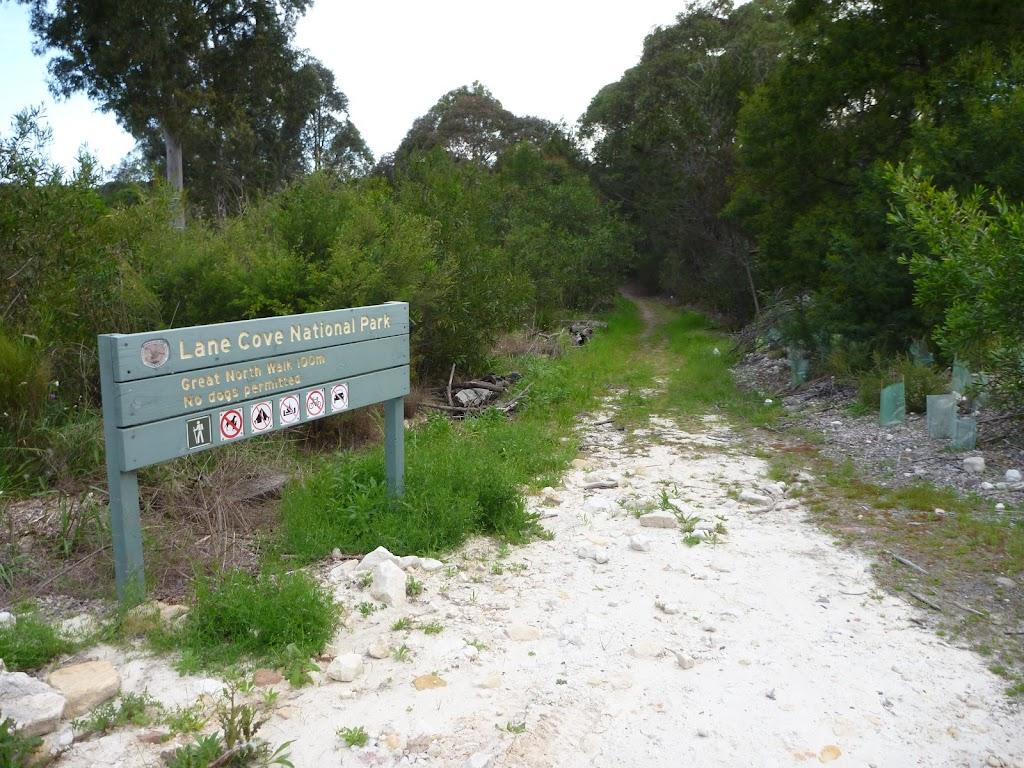 Track near north eastern corner for De Burghs Bridge