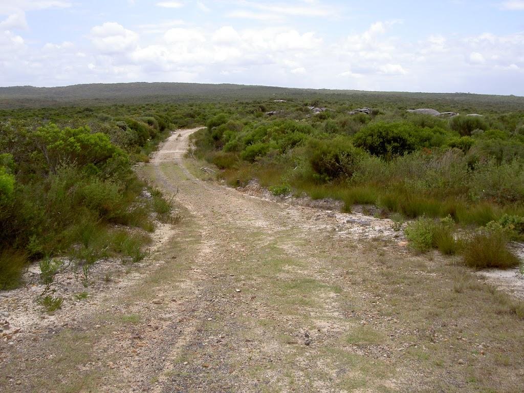 Mowlee Trail