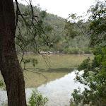 Cowan Creek south of Jerusalem Bay (348955)