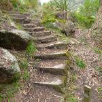 Steps up to the point at Jerusalem Bay (348964)