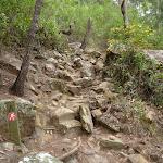 Rocky track north of Jerusalem Bay (349096)