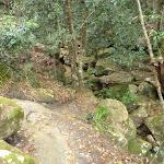 Rocky gully north of Jerusalem Bay (349126)