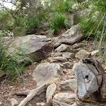 Rocky steep track north of Jerusalem Bay (349222)