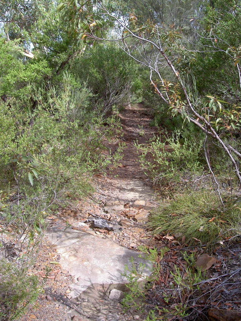 Track through heath from Bundeena Drive (35225)