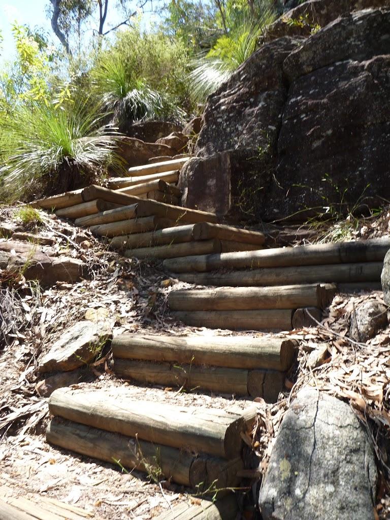 Steep winding track south of Washtub Creek