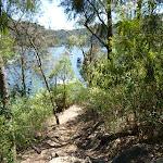 Walking alongside Berowra Waters Creek (353657)