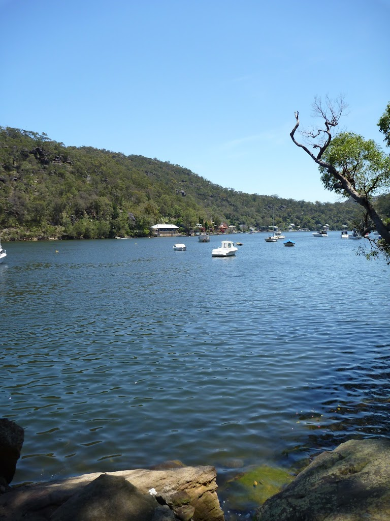 Berowra Creek north of Kirkpatrick Way