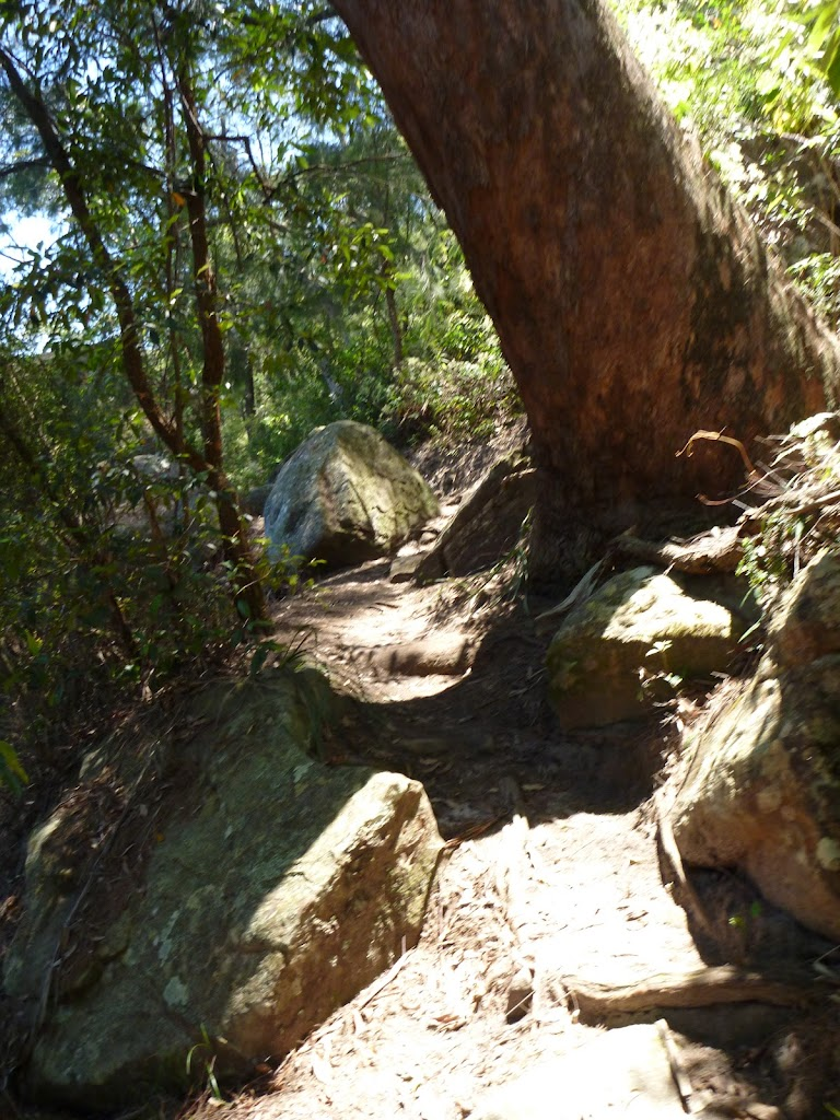 Rocky track  Beside Berowra Creek