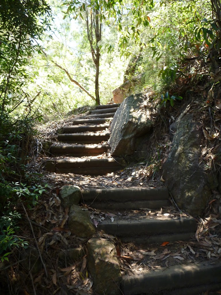 Looking up the steep climb from near Berowra Creek (354299)