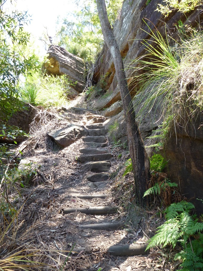 Steep steps east of Berowra Creek (354344)