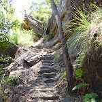 Steep steps east of Berowra Creek