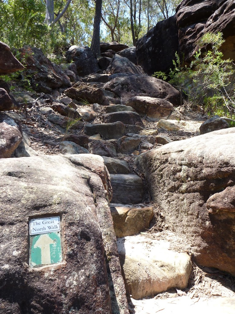 Rock steps near the top of the ridge east of Berowra Creek