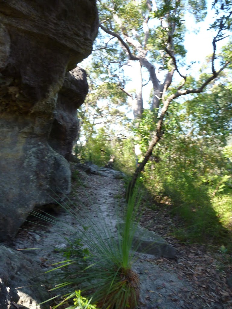 Rock walk west of Joe Crafts Creek