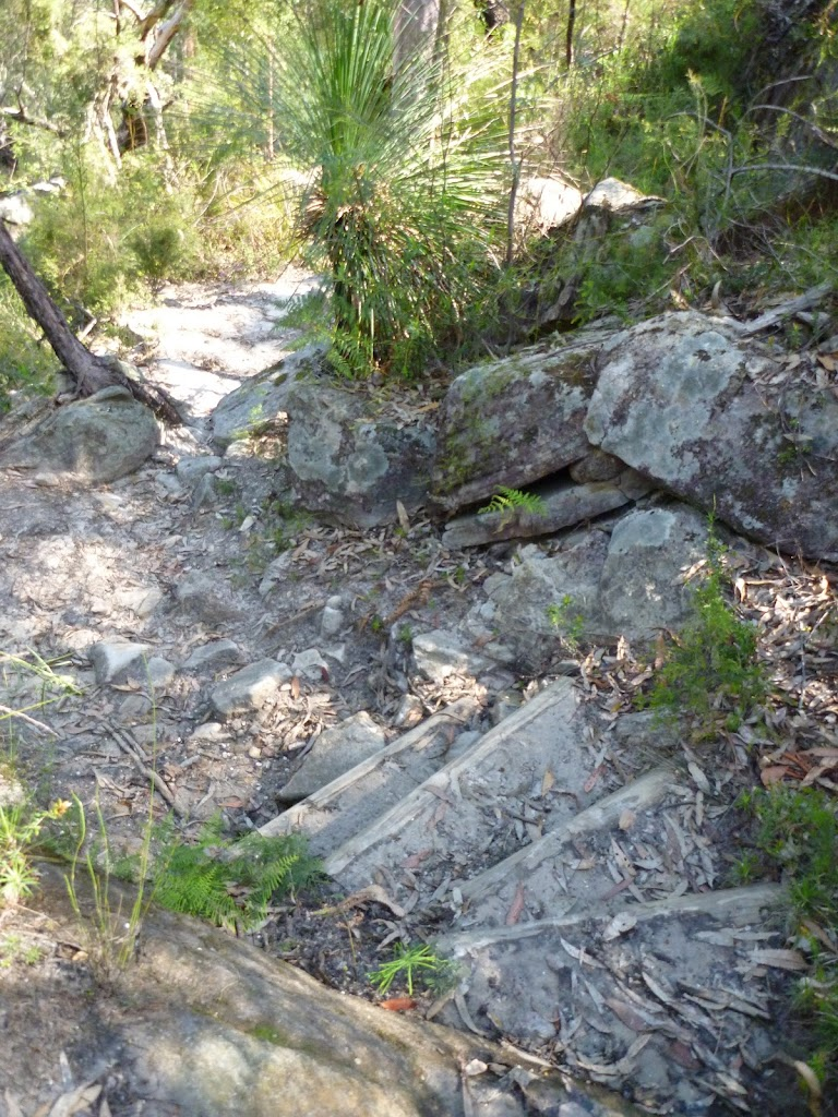 Steep track west of Joe Crafts Creek