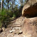 Steep track east of Joe Crafts Creek