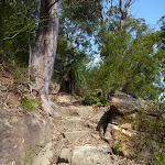 Steep steps east of Joe Crafts Creek