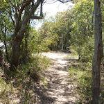 Trail on Freemans Drive trail