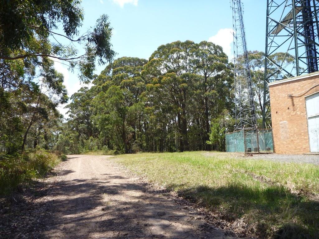 Road beside Heaton Communications Tower