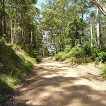 Walking along the road between Heaton Lookout and Tower