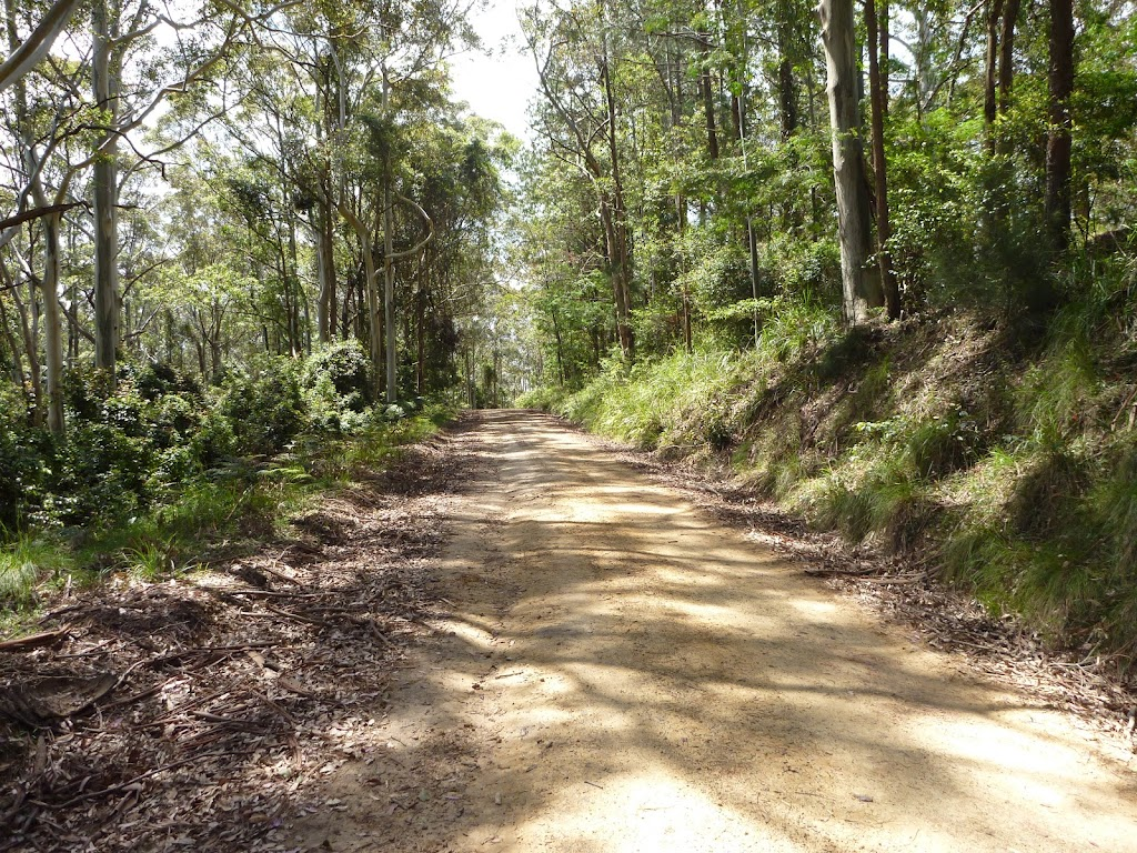 Walking along the road north of Heaton Lookout