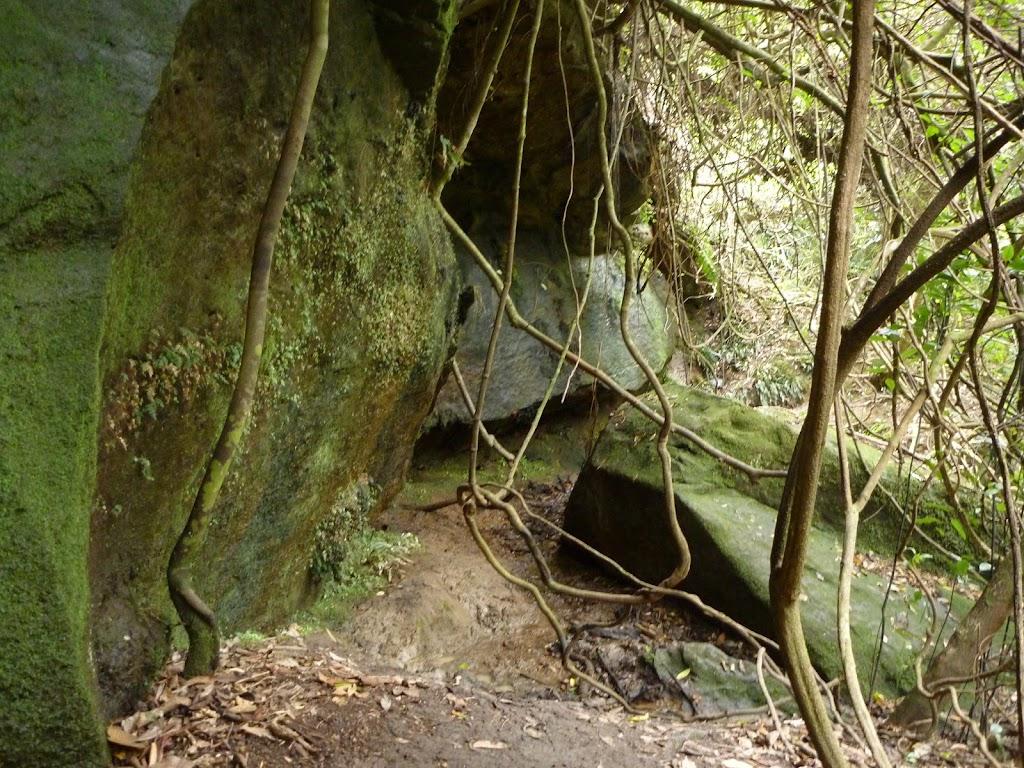 Rock wall just north of Wallis Creek