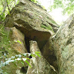 Interesting rocks on The Great North Walk