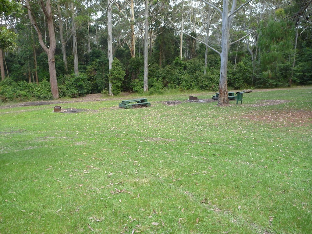 The open area in the Watagan Headquarters campsite