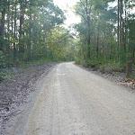 Watagan National Park Heatons Road