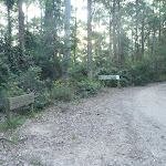 Heatons Road Watagan National Park (360971)