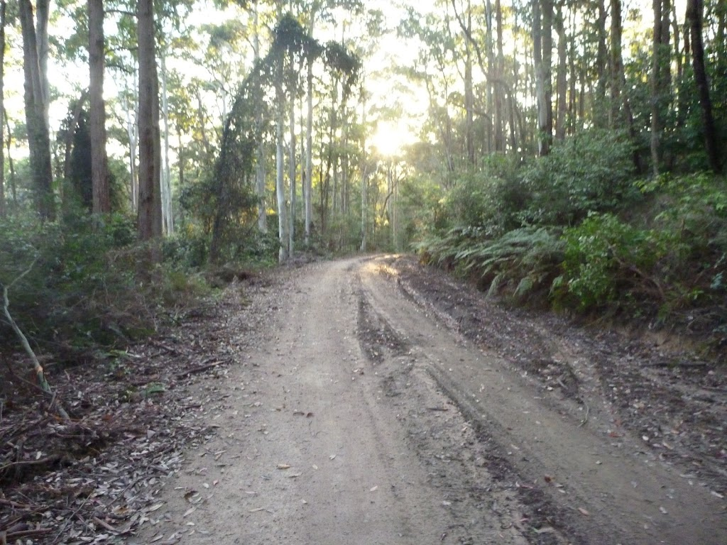 Georges Road Watasgans National Park