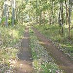 Georges Road Walking Trail