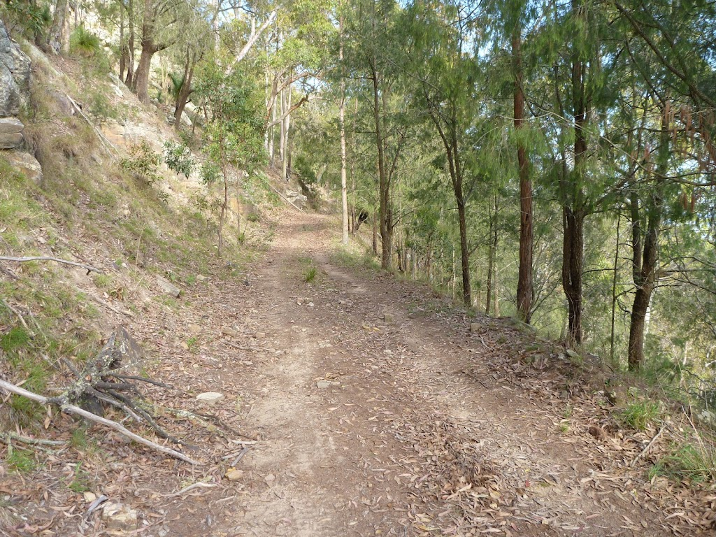 Georges Road Walking Trail (361613)