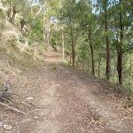Georges Road Walking Trail (361613)