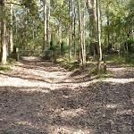 Georges Road Walking Trail (361667)