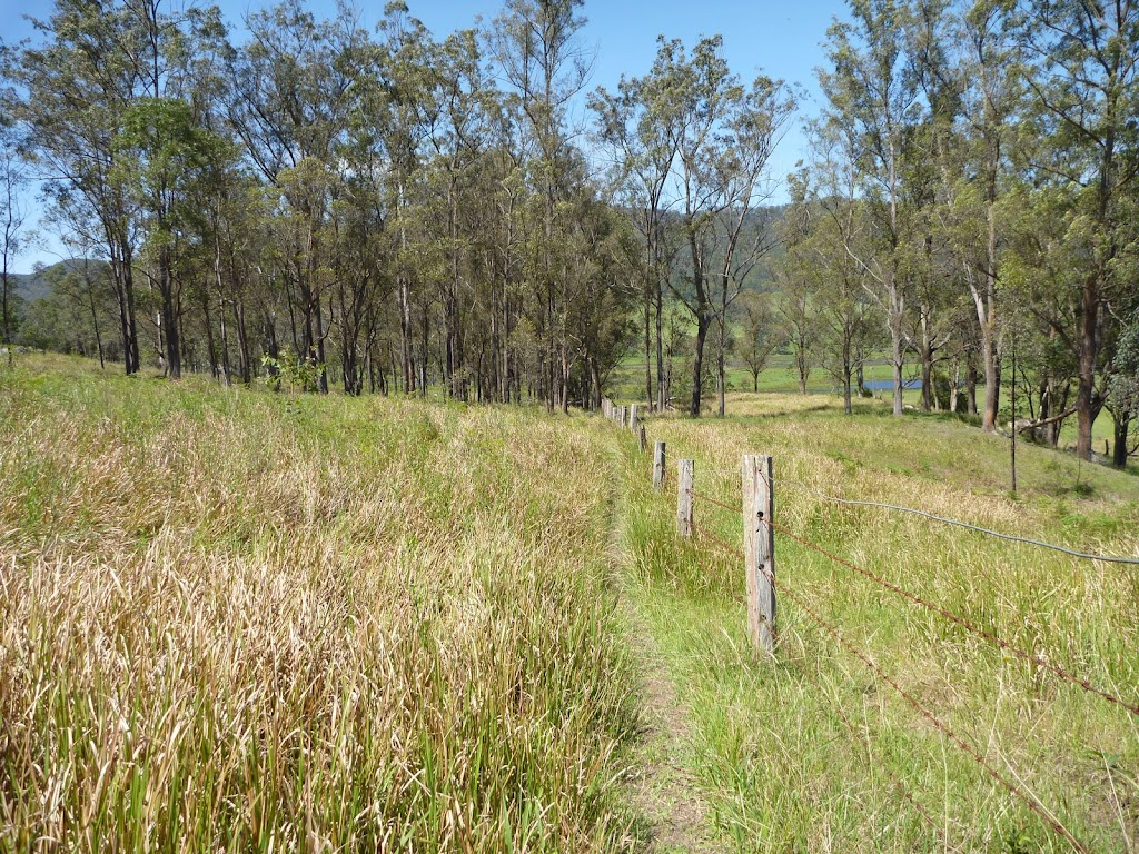 Congewai Valley Trail on The Great North Walk